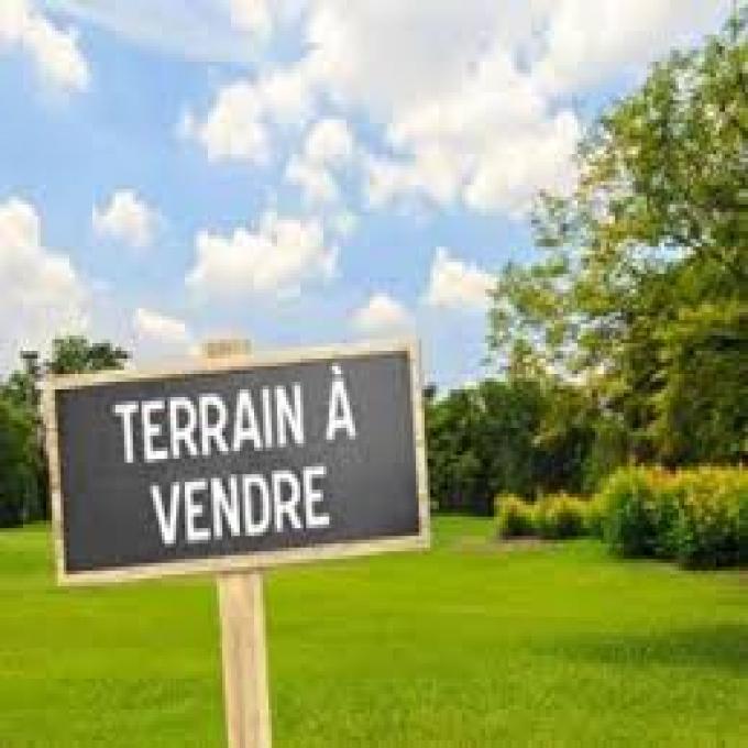Offres de vente Terrain Cambes (33880)